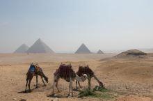 世界奇迹_埃及吉萨金字塔