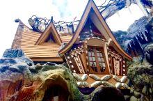 大叻的疯屋子,是越南前总统女儿设计的。夸张怪异的造型,类似于高迪的建筑。一座座充满童趣的房子,仿佛是
