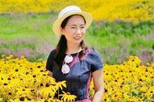 昌平七孔桥花海,夏季赏花正当时