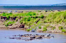 塞伦盖蒂草原,每年7-10月的动物大迁徙,生命的横渡,去的时候,发现河面并不是很宽阔,没有千军万马的