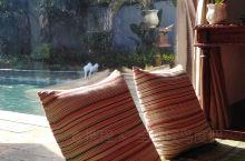 全球候鸟度假酒店,独享一缕阳光