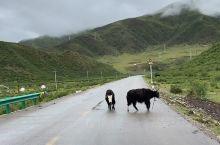 G548 果洛藏族自治州
