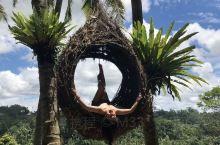 巴厘岛乌布地区,原始的当地人生活气息,还有就是东南亚热带雨林地区。 乌布的名宿做的特别好,下午茶啊,