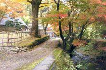 踏红叶地毯、拜访岩窟中的绝景:鳄渊寺