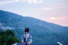 赏茶山看云海|西双版纳小众质感旅行