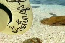 我终于把帽子从海里解救出来了
