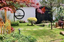我家小院之庭院小景