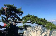 绝世风采之西岳华山