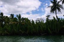 东方亚马逊—罗博河