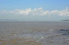 亚马逊黑白河