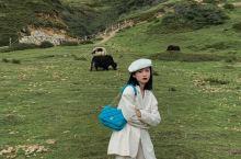 OMG丁真不在西藏❓