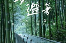 """安吉两天一晚避暑攻略 竹海吸氧+云端漂流  安吉,一座被称为""""竹之城""""的地方,既隐藏着绝美的风景,也"""