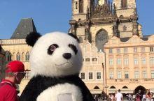 布拉格广场惊现一只大熊猫!