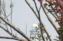 徐州植物园