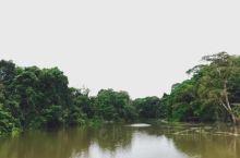 伟大的母亲河亚马逊河养育了南美洲的儿女,创造出独具特色的南美洲文化。  这条流经哥伦比亚、秘鲁、厄瓜