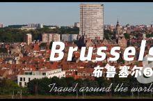布鲁塞尔市区略呈五角形,名胜古迹甚多,是