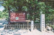 初夏去旅行系列~宁静雅致的水前寺成趣园