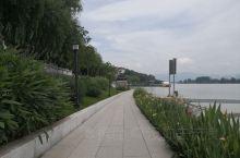 富春江穿过富阳城区,当地政府沿着江边打造了一带江滨环江游步道,很美。