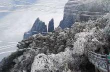 湖南郴州的莽山,披上了一层白霜,冻得瑟瑟发抖,但是景色实在太美