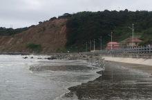 海浪与海鸥