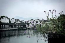 溪山行旅·纳凉常绿# 双休假期走进杭州富阳龙门古镇,今天和几组亲子游的家庭一起游玩了雨中的龙门古镇,