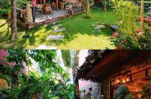 打卡同款西双版纳民宿,住进热带雨林  #西双版纳傣族自治州  上次去云南因为没有走到西双版纳一直感觉