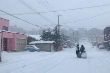 旅行 情书既视感 我们的北海道赏雪之旅