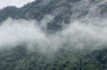三清山秘境|闯进迷雾森林