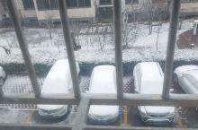 廊坊市的雪