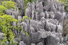 神剑山石林