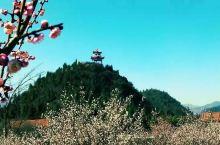 行走的风景——孤山寺北贾亭西,水面初平湖中游