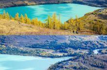 大美北疆,金黄秋色。