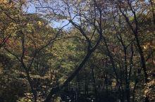 去绿石谷呼吸新鲜空气吧~