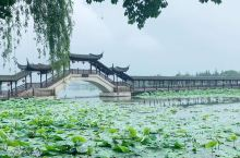 锦溪古镇|中国民间博物馆之乡