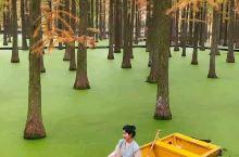 扬州绿野仙踪