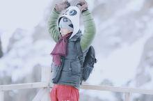 """飞越新疆的""""脊梁"""",大熊猫曹小天来到早被白雪厚覆的【天山天池】。 天山把南北疆相隔,东段最高峰544"""