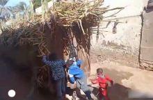 埃及穿梭在小巷的甘蔗列车,小孩子都来坐顺风车了
