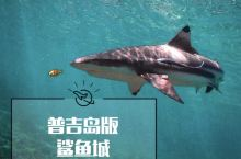 【小众秘境】普吉岛版—鲨鱼城