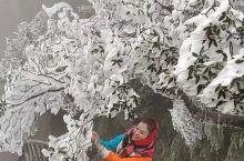 仙气飘飘的三清山,大雪的日子我喜欢