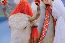 天上西藏人间天堂探寻不一样的秘境阿里