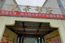 北川羌茶部落欢迎你来体验,主要从事茶叶生