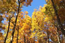 四川的秋天有多美
