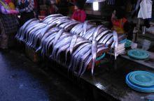 釜山海鲜市场