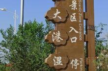 河北沧州  南大港湿地