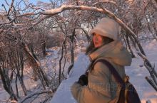 吉林旅行|零下35°C神鹿山上千年菩提树