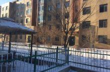 今年的春节在雪中飘过、瑞雪丰年、太棒了