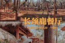 花30万越南盾吃长颈鹿餐厅到底值不值??