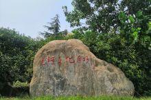 微山湖运河文化广场!圣人孔子先祖殷微子仙息之地!