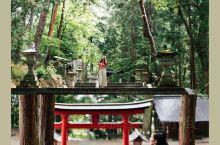 日枝神社,《你的名字》取景地巡礼第五站