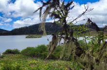 香格里拉碧古天池一日游